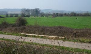 Cycle trails-Mar22-1