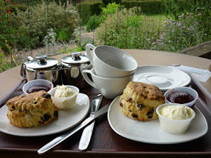 devon-cream-tea
